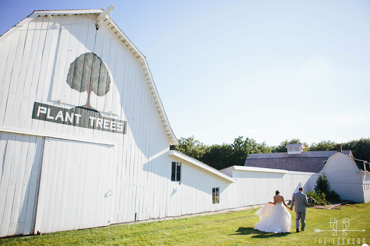 Wedding couple holding hands walking in front of barn entrance with the phrase plant trees painted on it